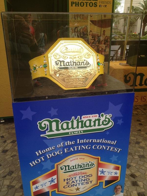 Nathans Champion Belt