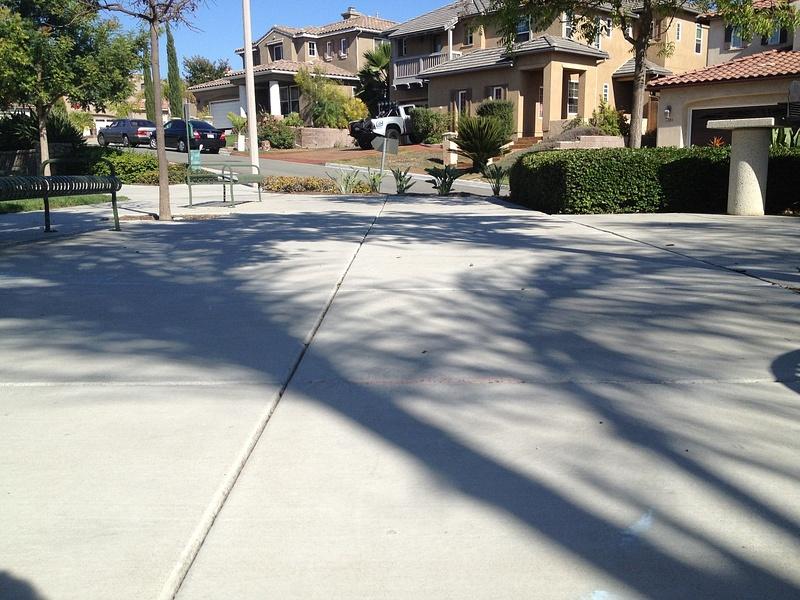 Local park tree shadow