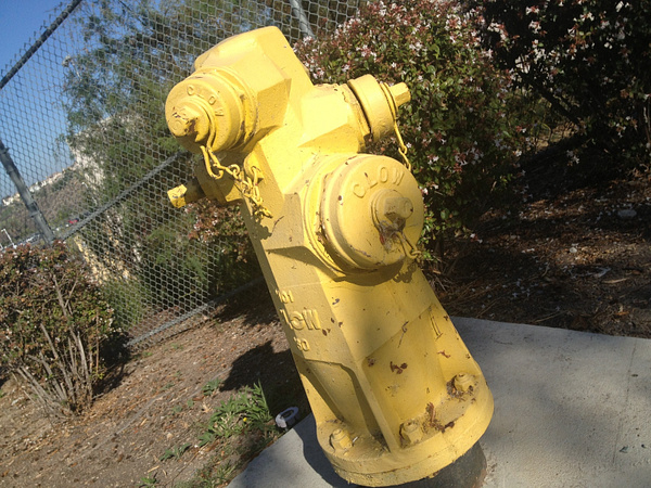 School Fire Hydrant by RyanAvelino