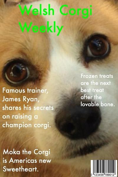 Welsh Corgi Weekly by RyanAvelino