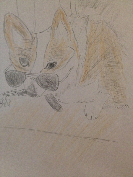 Drawing of the Dog by RyanAvelino