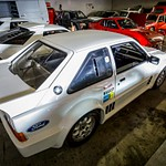 Wild Rally Machines