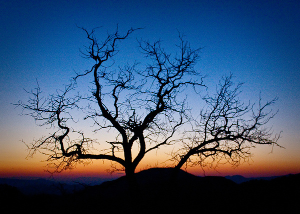Virginia City Dawn by Peter Radsliff