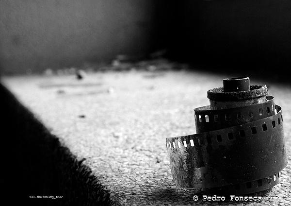 pfonseca's Photoblog