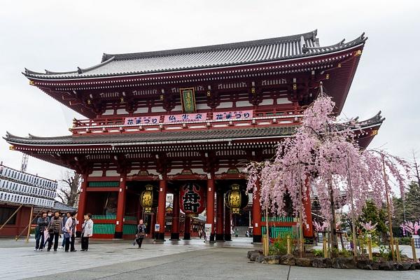 Japan2014-20 by DmitryKarmanov