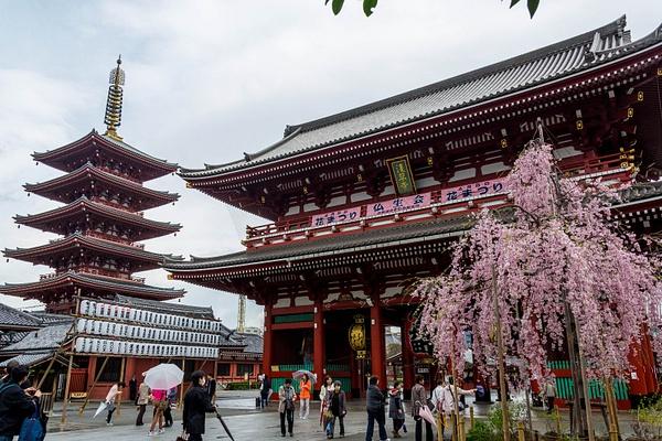 Japan2014-22 by DmitryKarmanov