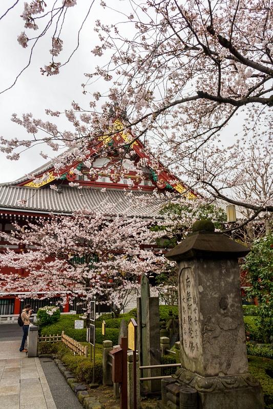 Japan2014-55