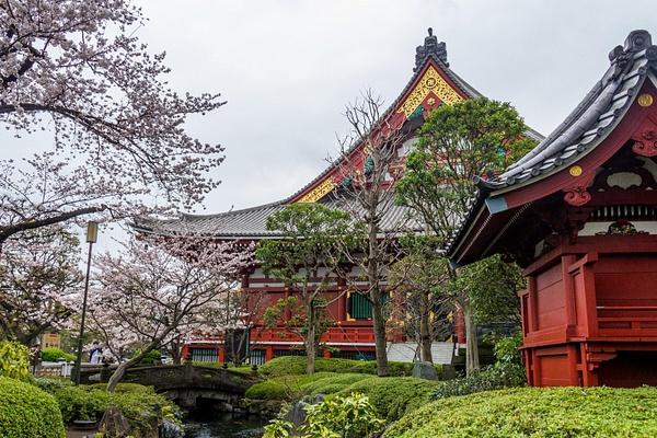 Japan2014-59 by DmitryKarmanov