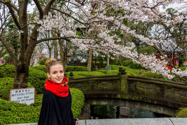 Japan2014-53 by DmitryKarmanov
