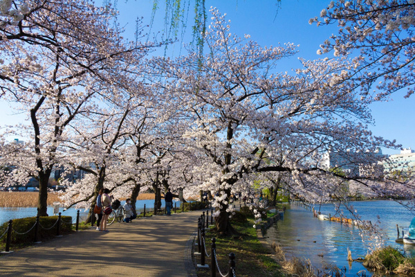 Japan2014-171 by DmitryKarmanov
