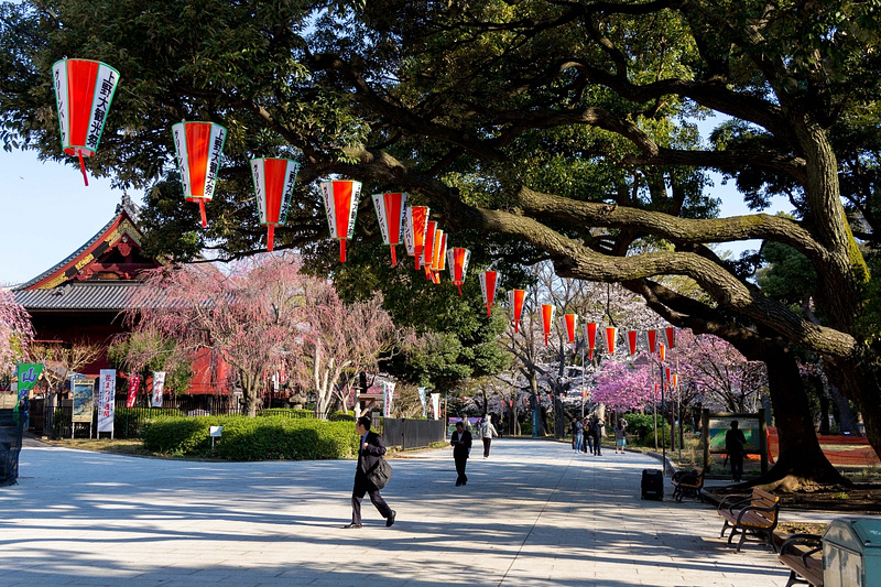 Japan2014-192