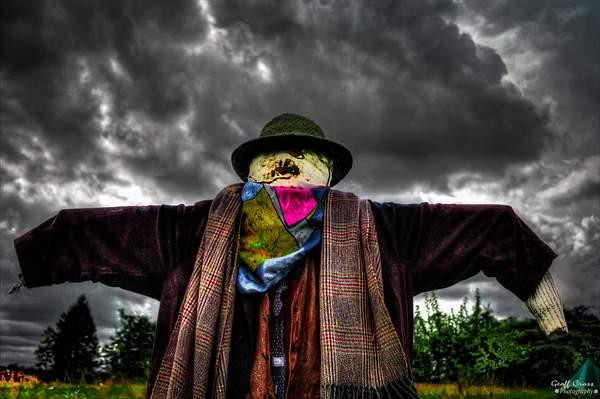The Crowman