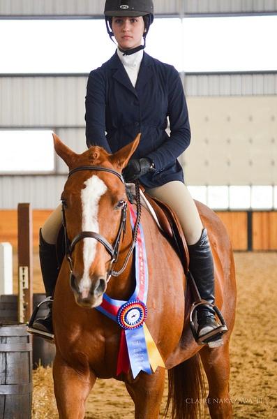 Junior/Adult Amateur Equitation Finals (over fences) by ClaireNakazawa