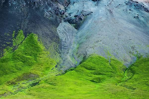 Colorful hillside 222