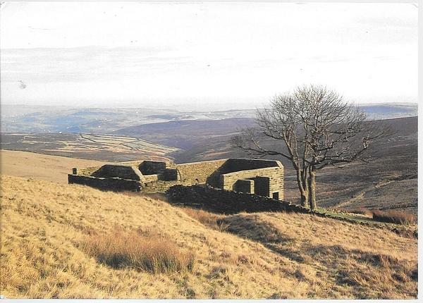 haworthmoor by Stuart Alexander Hamilton