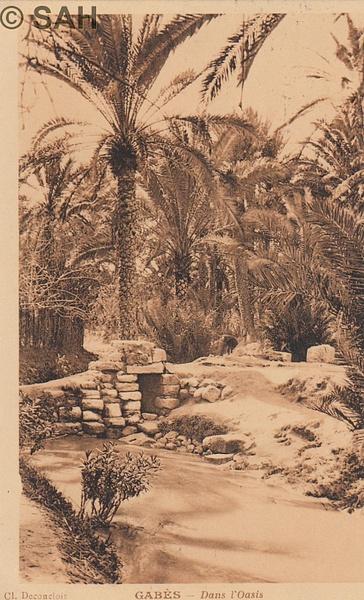tunisia by Stuart Alexander Hamilton