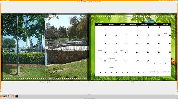 Calendar June by Jose Martinez