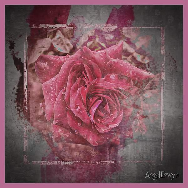 Textured Pink Rose
