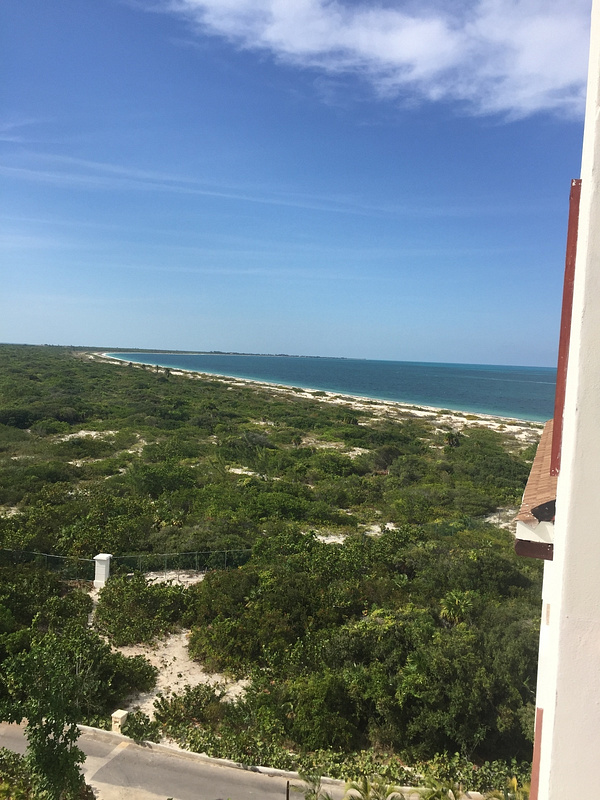 View up the beach from building 3