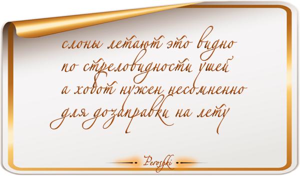 pirojki_005 by Rimonel3
