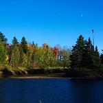 Centennial Park Fall