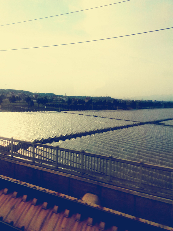 Railway in China (4)