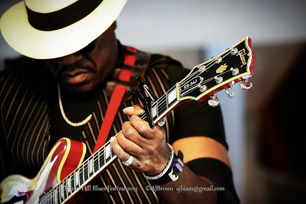 Tinner Hill Blues Festival 2013 by AJBrown