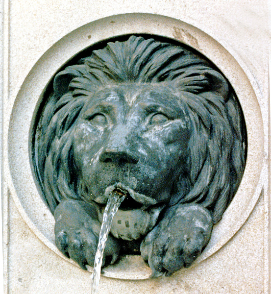 Lion Fountain Vienna_pe by James Bickler