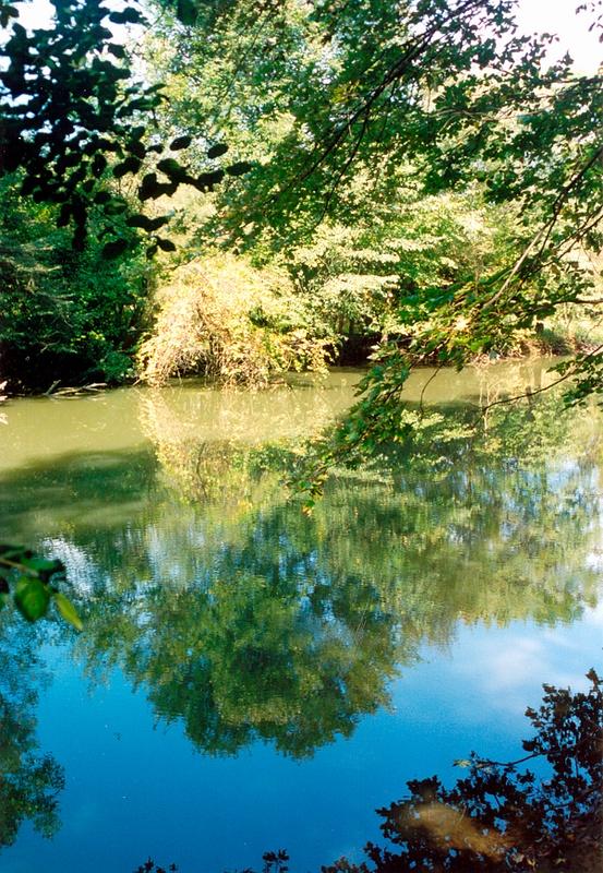 Des Plaines River A 1996