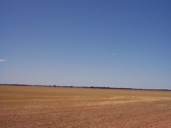 north easish  towards wodonga by AndrewTaylor