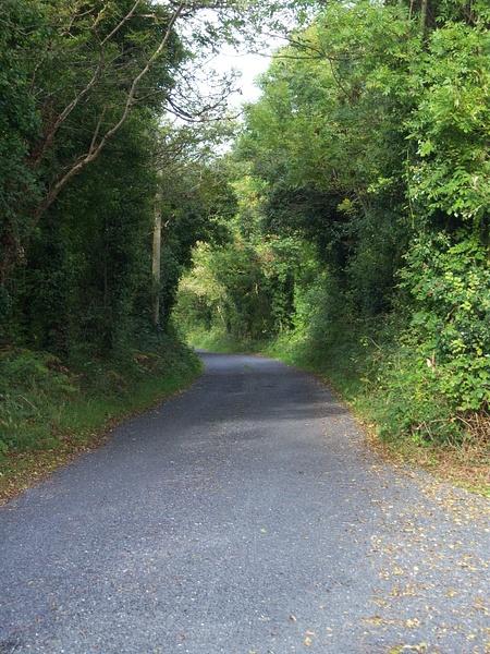 Ireland Trip 117 by Carol Alexander