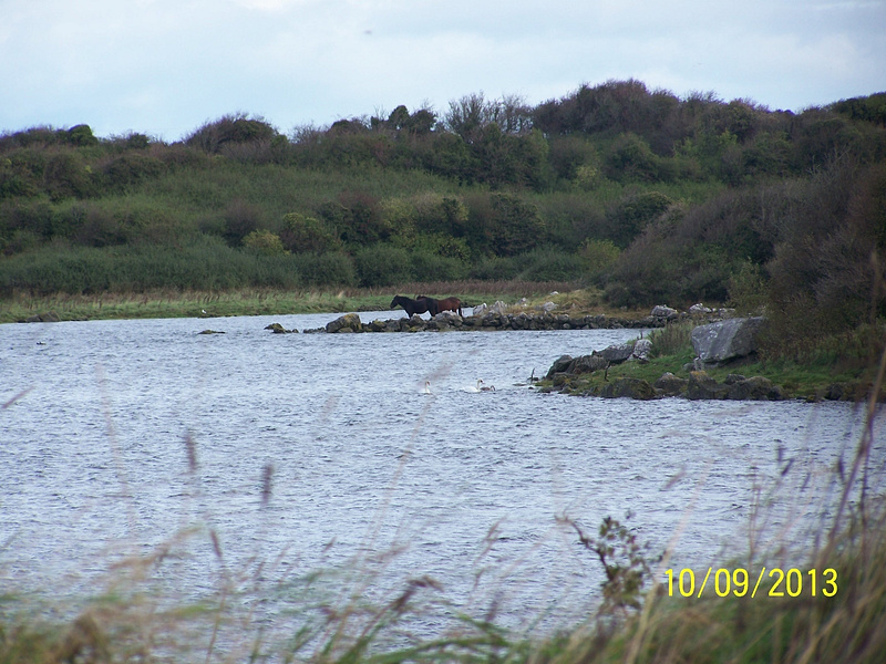 Ireland Trip 102
