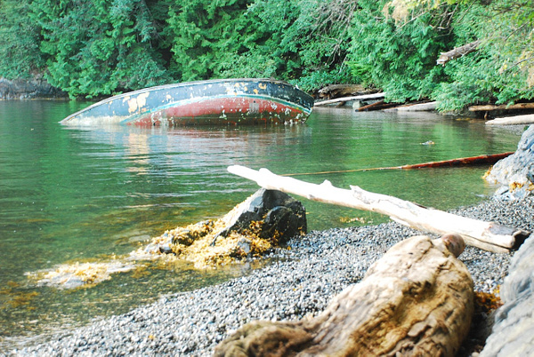 Plumper Cove 2016 - 57 of 122 by MarcSoer