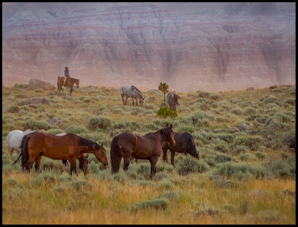 Early moring on the range by FotoClaveGallery
