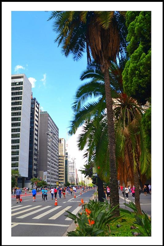 Aveida Paulista--02-04-2017 (278 (156)