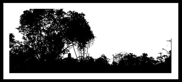 50-Tons-de-Cinza (353) by marcomachado