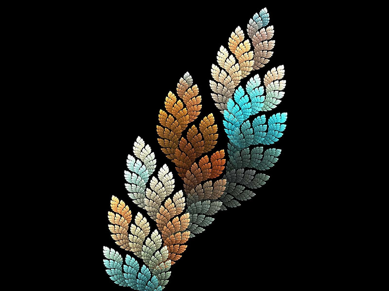 leaf-colors-spiral-black-background-art-texture-abstract