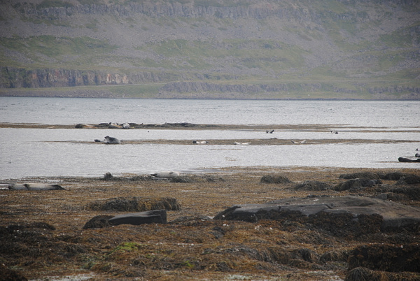 x x x by Maria Dzeshchanka