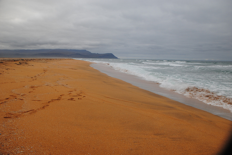 Rauðisandur Beach