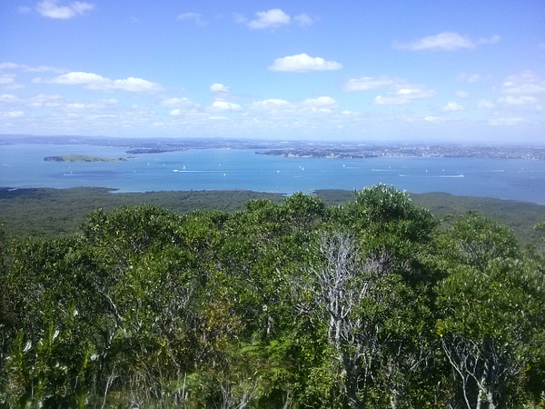 View from Rangitoto Island by Maria Dzeshchanka