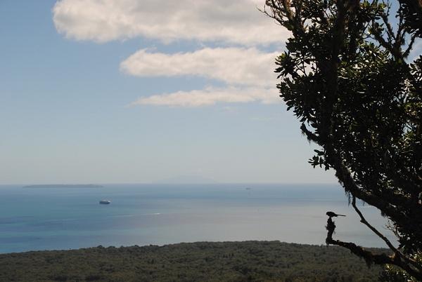 Rangitoto Island by Maria Dzeshchanka