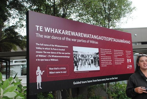 Full name of Whakarewarewa Valley by Maria Dzeshchanka