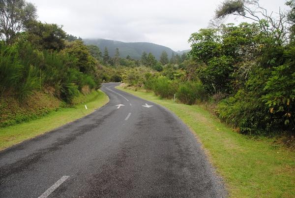 Road to Wai-O-Tapu by Maria Dzeshchanka