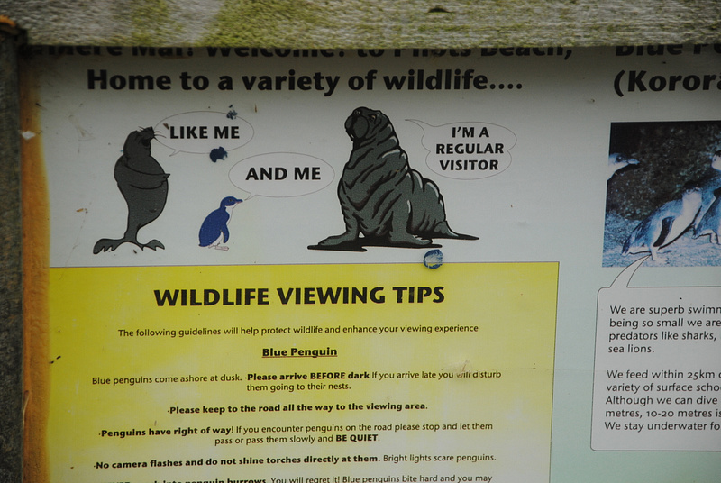 Wildlife viewing tips
