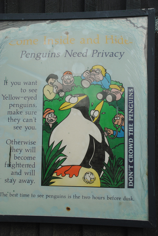 Penguins' privacy
