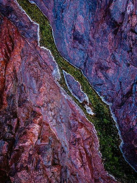 Pool Of Color - Grand Canyon