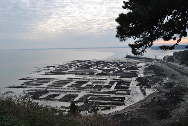 Cancale's oyster farm..creepy by Angelika