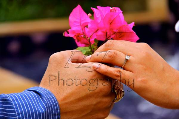 FLJ Photography