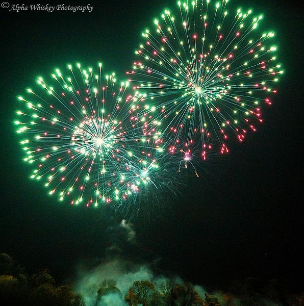November Fireworks by Alpha Whiskey Photography