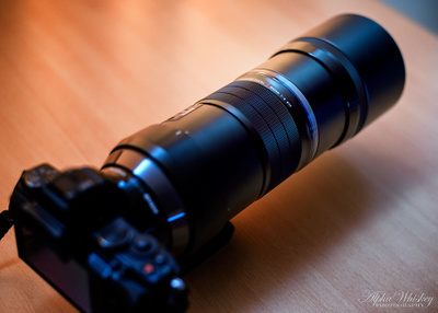 Olympus 300mm F/4 - A User Experience.